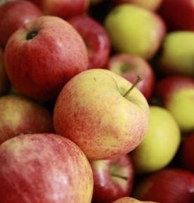 Pomme gala (les 2 kg)